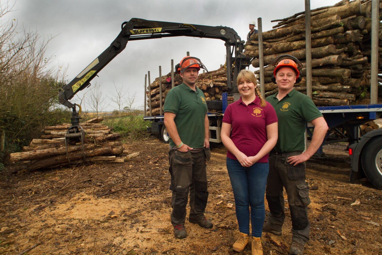 About Somerset Timber